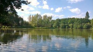lake picture 3